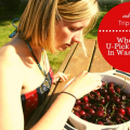 Thumbnail image for Ask TripFinder: Where to Go Cherry Picking?