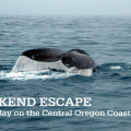 Thumbnail image for Weekend Escape: Depoe Bay on the Oregon Coast