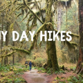 Thumbnail image for Rainy Day Hikes from Seattle