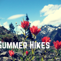 Thumbnail image for High Country Hikes: Epic Northwest Trails for Blooms and Views