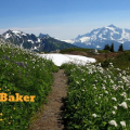 Thumbnail image for STAY & PLAY: Mount Baker