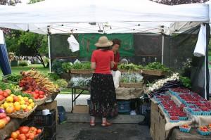 saltspring-farmers-market-by-utahcanuck