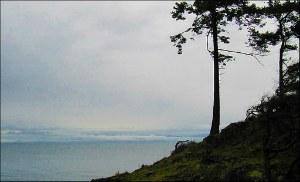 Northwest TripFinder Vancouver Island