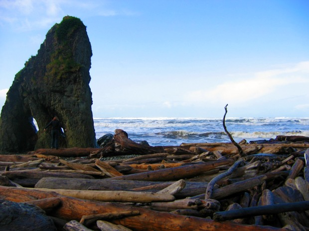 Driftwood Beach in Olympic National Park