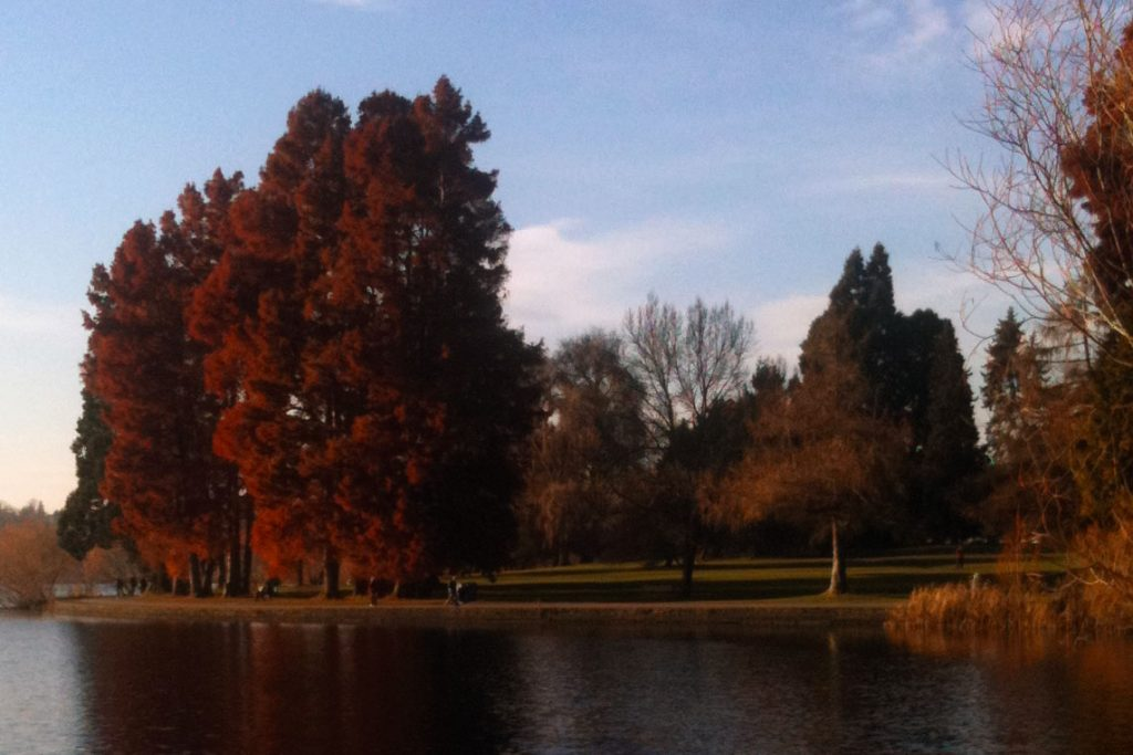 Green Lake in fall color