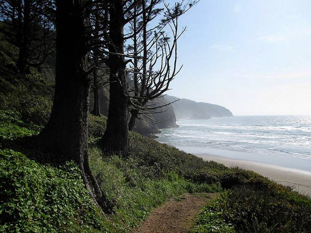 Cape Lookout Trail By Matt Picio