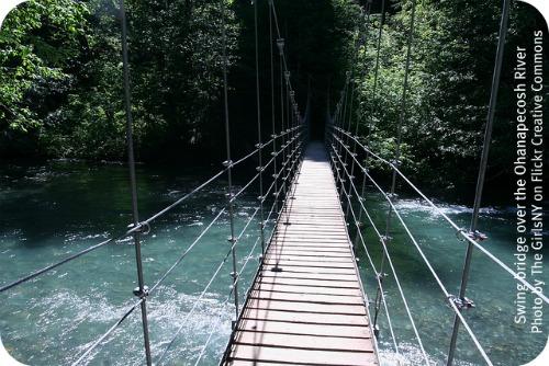 Ohanapecosh River bridge by TheGirlsNY