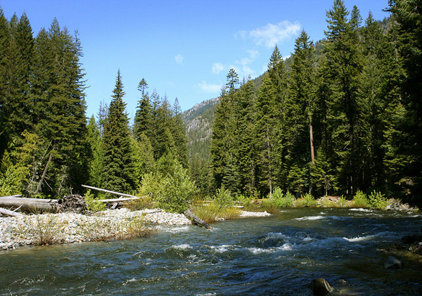 Ida Creek Campground near Leavenworth