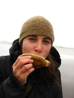 Razor clam kissing by