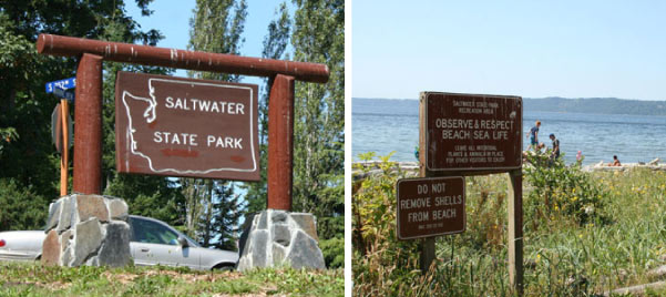 Saltwater State Park and Campground near Seattle