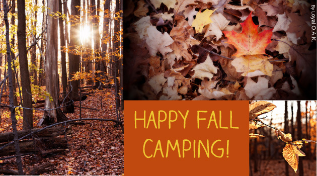 Happy Fall Camping! Photos by Loyal Oak via Flickr Creative Commons.