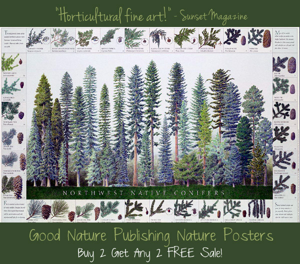 Good Nature Publishing Buy 2 Get 2 Free