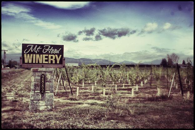Tasting at Hood River Winery