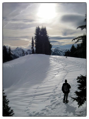 Snowshoe Tips and Trails at Mount Rainier National Park