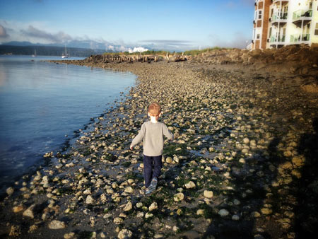 Port Townsend Waterfront by Dan Buck