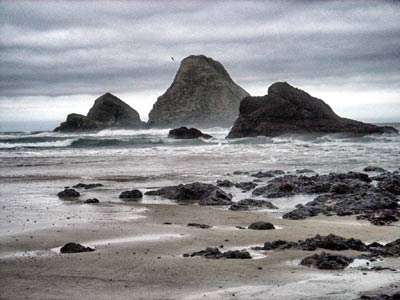 Oceanside Oregon, Three Arch Rocks National Wildlife Refuge by connectologist