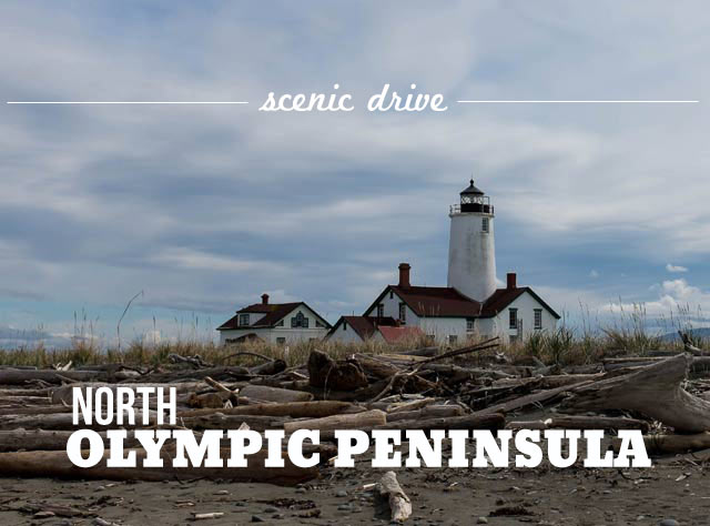 Road Trip: North Olympic Peninsula