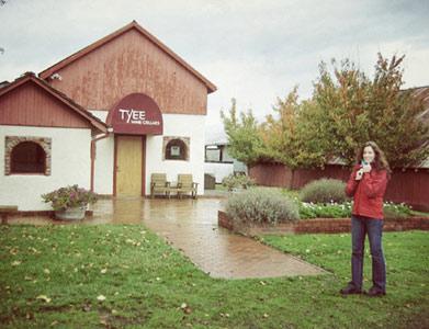 My visit to Tyee Vineyards near Corvallis, Oregon