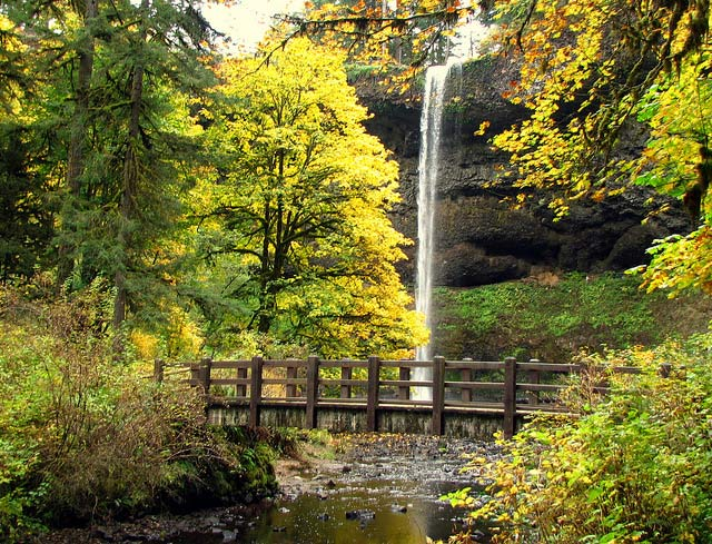 CAMP & HIKE: Silver Falls State Park in Oregon