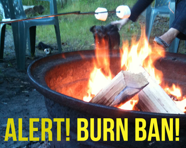 Alert! Campfire burn ban in Washington state