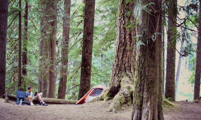 Ask TripFinder: Where to camp at Mt. Rainier?