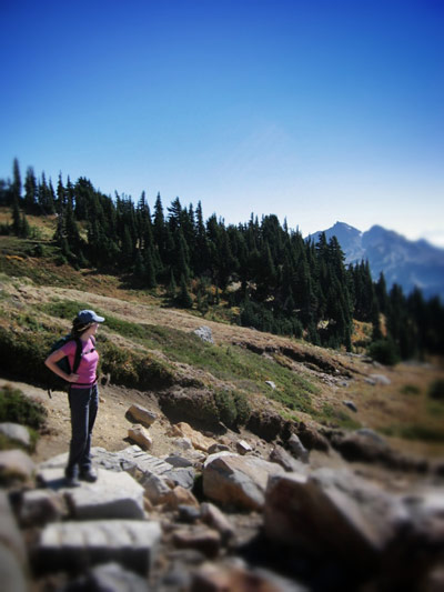 DAY TRIP: Hiking in Paradise at Mount Rainier