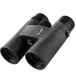 My picks for binoculars for beginner birdwatchers, based two decades of birding!