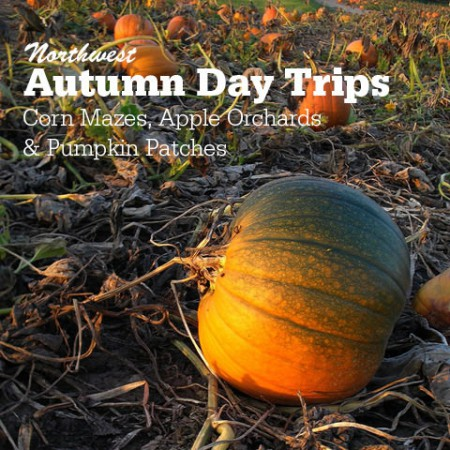 Northwest Autumn Day Trips