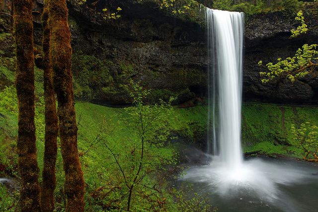 Silver Falls State Park by Ian San via Flickr Creative Commons