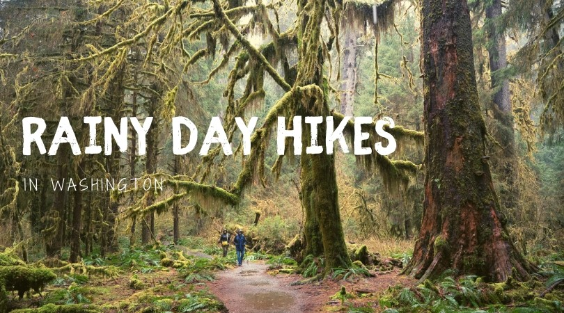 Rainy Day Hikes from Seattle