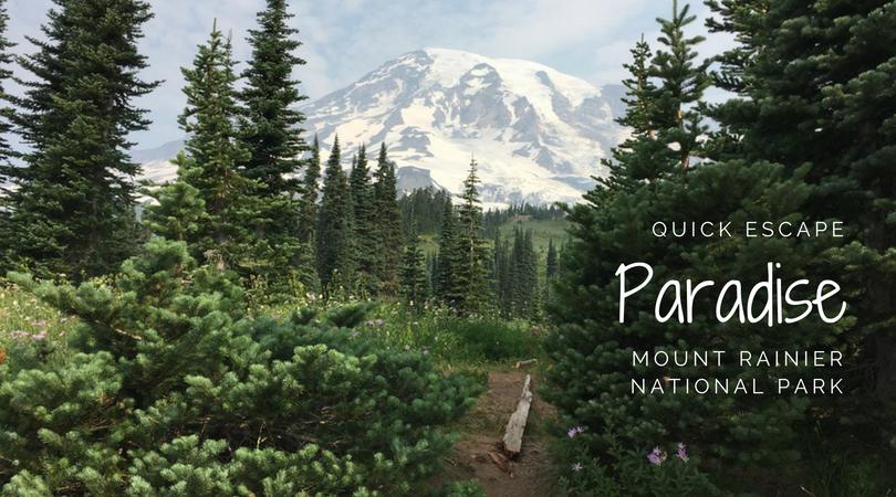 Quick Escape: Paradise at Mount Rainier National Park