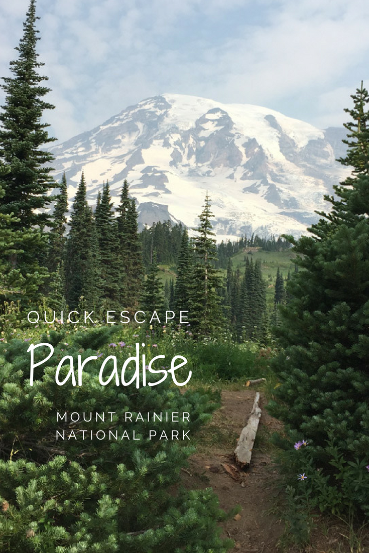 DAY TRIP: Hiking in Paradise at Mount Rainier | Northwest