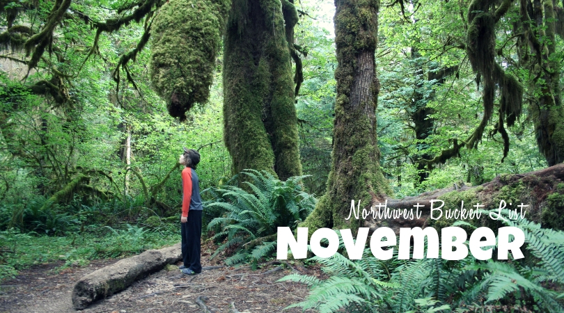 Northwest Bucket List: November