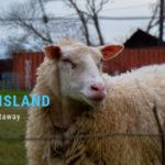 Locavore Trip: Lummi Island