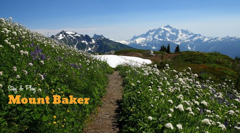 STAY & PLAY:: Mount Baker