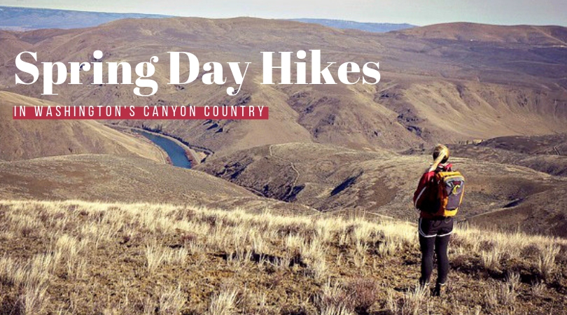 STAY & PLAY: Spring Desert Hikes in Washington's Canyon Country