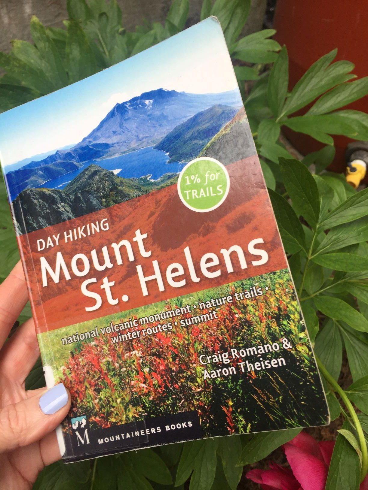 Find Cool Geology at Mount St. Helens