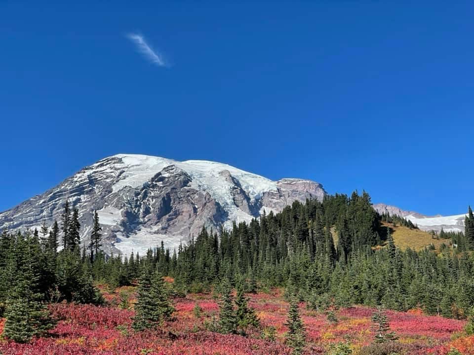 Paradise at Mt. Rainier in autumnhues